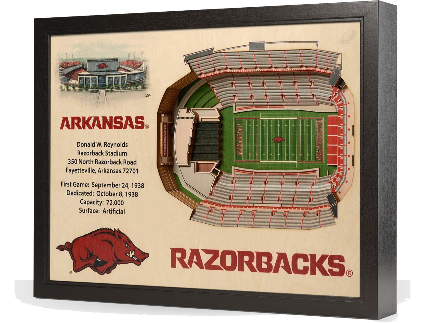 You the Fan Arkansas Razorbacks 25-Layer StadiumViews 3D Wall Art