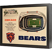 You the Fan Chicago Bears 25-Layer StadiumViews 3D Wall Art