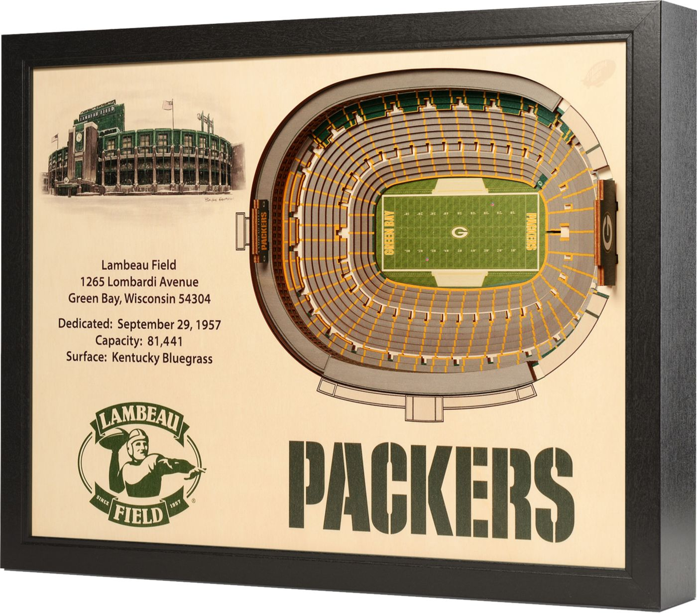 You the Fan Green Bay Packers 25-Layer StadiumViews 3D Wall Art