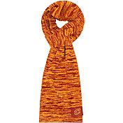 FOCO Cleveland Cavaliers Colorblend Infinity Scarf