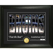 Highland Mint Boston Bruins Silhouette Photo Mint