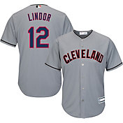 Youth Replica Cleveland Indians Francisco Lindor #12 Road Grey Jersey