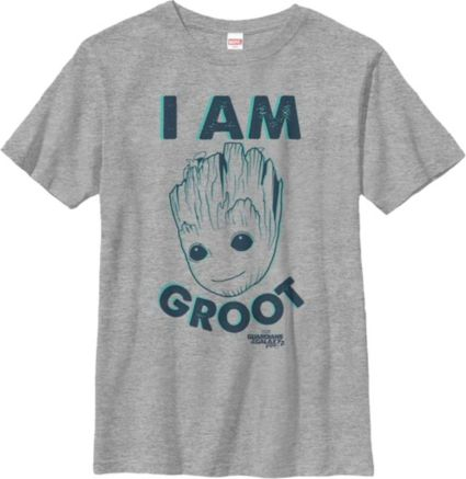 beda9693be38 Fifth Sun Boys' Marvel 'The Groot' Graphic T-Shirt | DICK'S Sporting ...