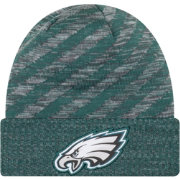 New Era Men's Philadelphia Eagles Sideline Cold Weather TD Green Knit