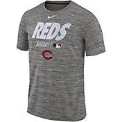 Nike Men's Cincinnati Reds Dri-FIT Authentic Collection Legend T-Shirt