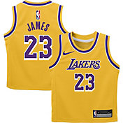 Nike Toddler Los Angeles Lakers LeBron James #23 Gold Dri-FIT Swingman Jersey