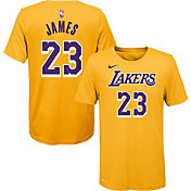 Nike Toddler Los Angeles Lakers LeBron James #23 Dri-FIT Gold T-Shirt