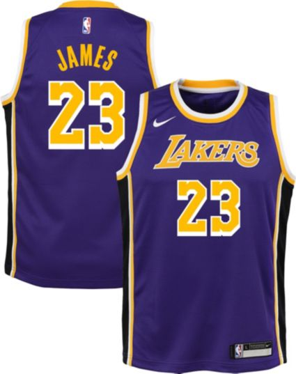 Nike Youth Los Angeles Lakers LeBron James Dri-FIT Purple Statement Swingman  Jersey. noImageFound e645a053c