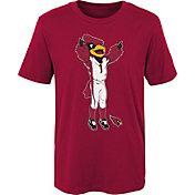 NFL Team Apparel Boys' Arizona Cardinals Mascot Red T-Shirt