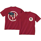 New World Graphics Men's South Carolina Gamecocks Garnet Flag T-Shirt