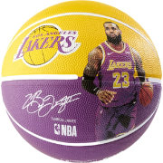 Spalding Los Angeles Lakers Lebron James Player Full Sized Basketball