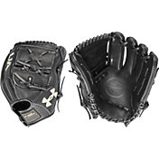 Under Armour 12'' Flawless Series Glove 2018