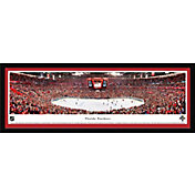 Blakeway Panoramas Florida Panthers Framed Panorama Poster