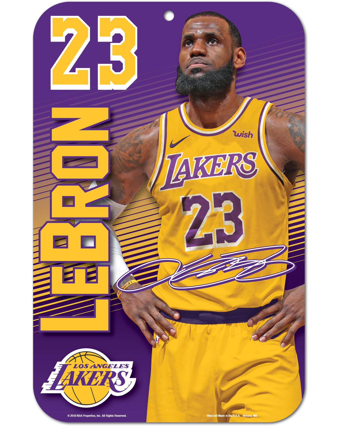 WinCraft Los Angeles Lakers LeBron James Sign