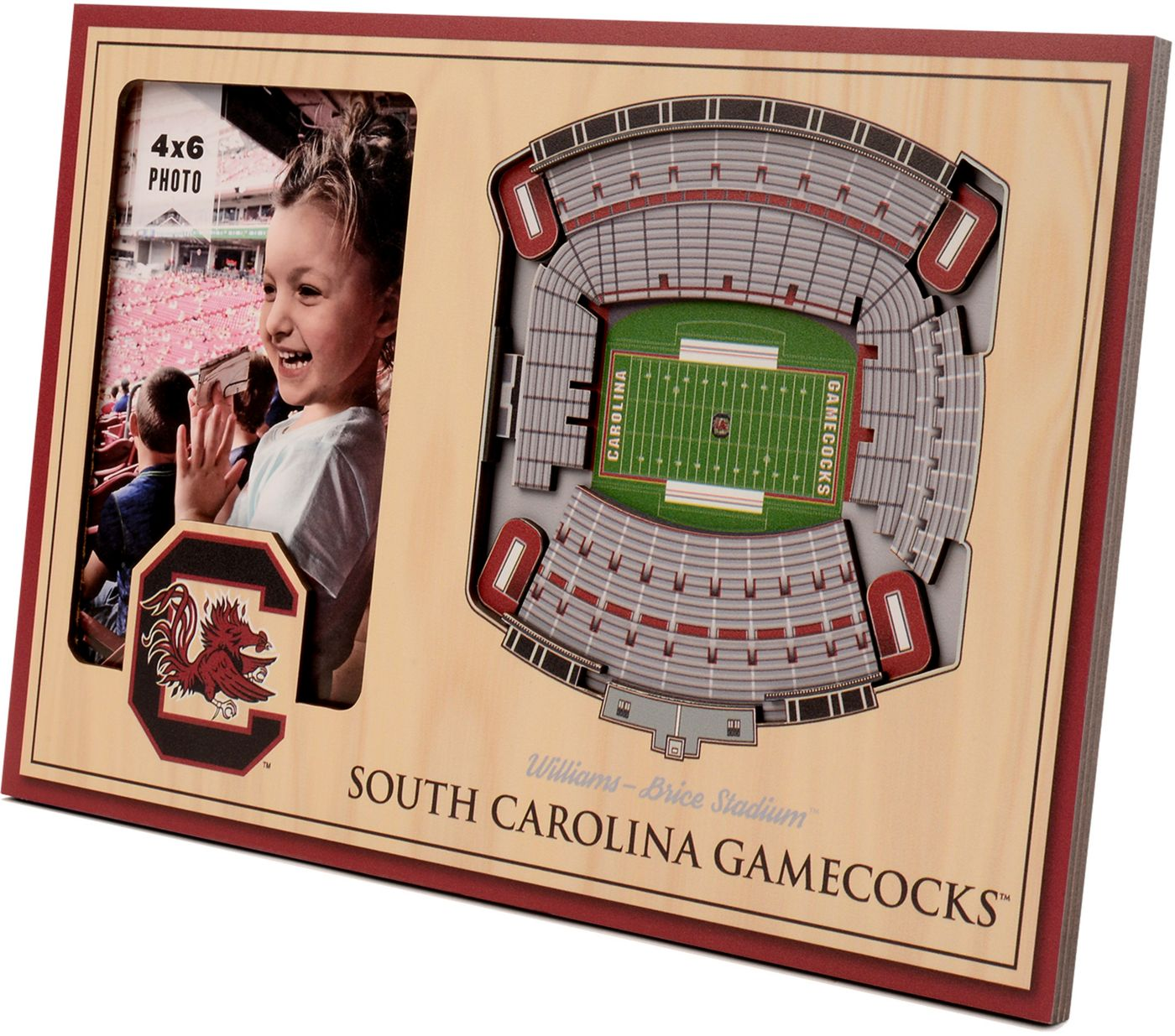 You the Fan South Carolina Gamecocks 3D Picture Frame