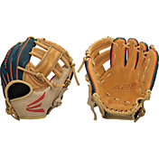 Easton 10'' Youth Professional Series Glove 2020