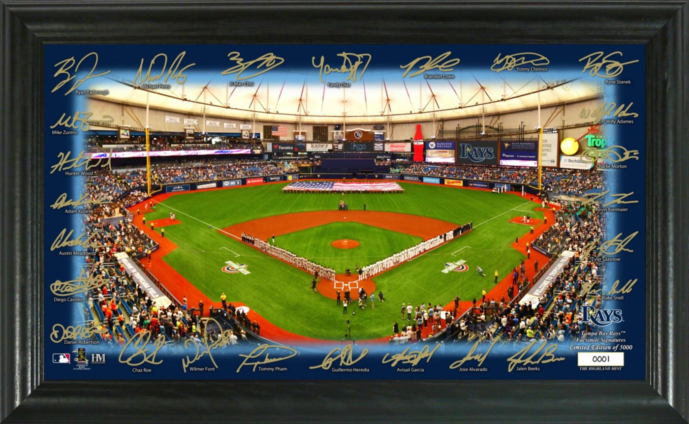 Highland Mint Tampa Bay Rays Signature Field Photo Frame