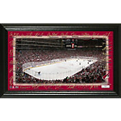 Highland Mint 2018 Arizona Coyotes Signature Rink