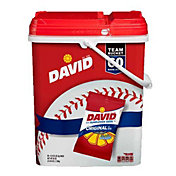 David Team Bucket 60-Count Sunflower Seeds