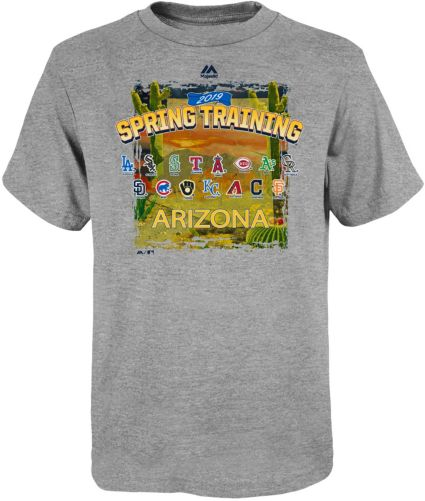 Majestic Youth 2019 Spring Training Cactus League Grey T-Shirt. noImageFound 7ede19080