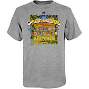 Majestic Youth 2019 Spring Training Cactus League Grey T-Shirt