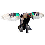 MOJO Outdoors Elite Series Green Wing Teal Decoy