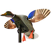 MOJO Outdoors Elite Series Mini Mallard Drake Decoy