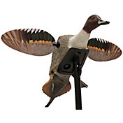 MOJO Outdoors Elite Series Pintail Decoy