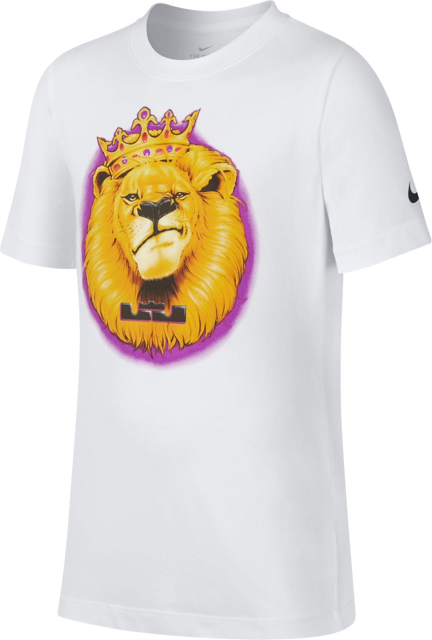 Nike Boys' Dri-FIT Lebron DFC Graphic T-Shirt