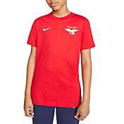 Nike Boys' Sportswear USA Olympic Eagle T-Shirt