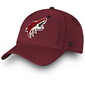 NHL Men's Arizona Coyotes Speed Flex Hat