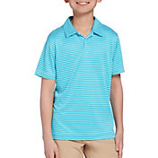 DSG Boys' Bar Stripe Golf Polo