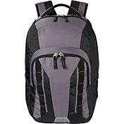 DSG Canyon Backpack in Asphalt/Black
