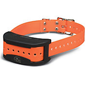 SportDOG Brand SDF-CT Add-A-Dog Collar