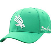 Top of the World Men's North Texas Mean Green Green Phenom 1Fit Flex Hat