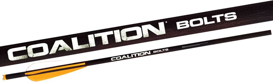 PSE Coalition Crossbow Bolt - 6 Pack, Size: Small thumbnail