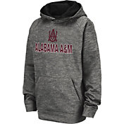 Colosseum Youth Alabama A&M Bulldogs Grey Pullover Hoodie