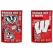 Evergreen Wisconsin Badgers Fan Rule Garden Flag