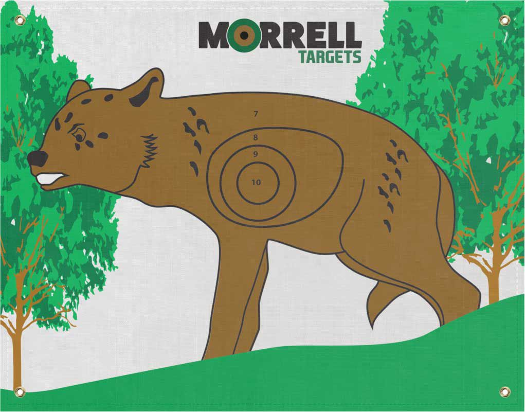 Morrell Coyote I.B.O. NASP Archery Target Face