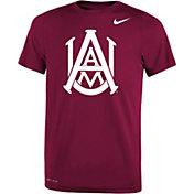 Nike Youth Alabama A&M Bulldogs Maroon Legend Performance T-Shirt