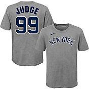 Nike Youth New York Yankees Aaron Judge #99 Gray T-Shirt