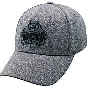 Top of the World Men's Central Arkansas Bears  Grey Steam 1Fit Flex Hat