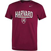 Nike Youth Harvard Crimson Crimson Dri-FIT Legend T-Shirt