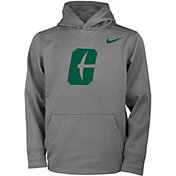 Nike Youth Charlotte 49ers Grey Therma Pullover Hoodie