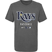 Nike Youth Tampa Bay Rays Grey Early Work Performance Tri-Blend T-Shirt
