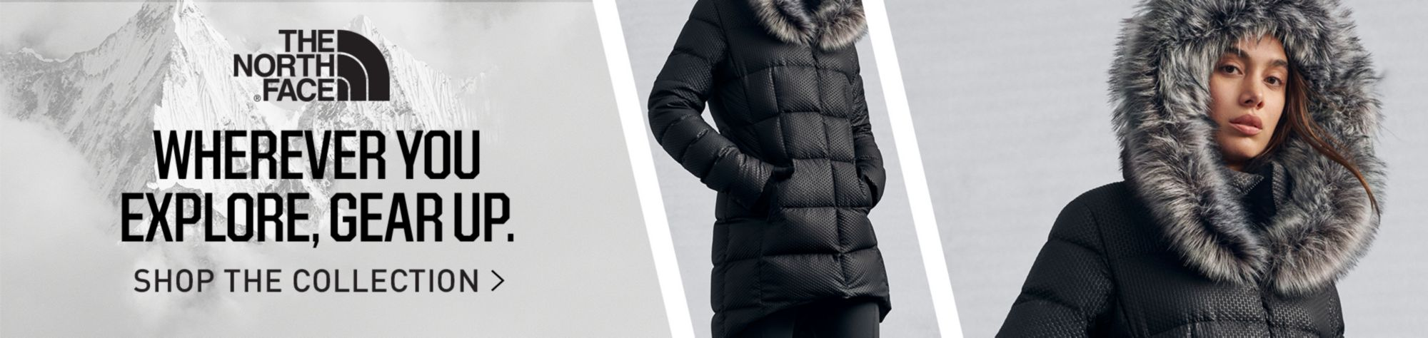 The North Face Jackets & Vests