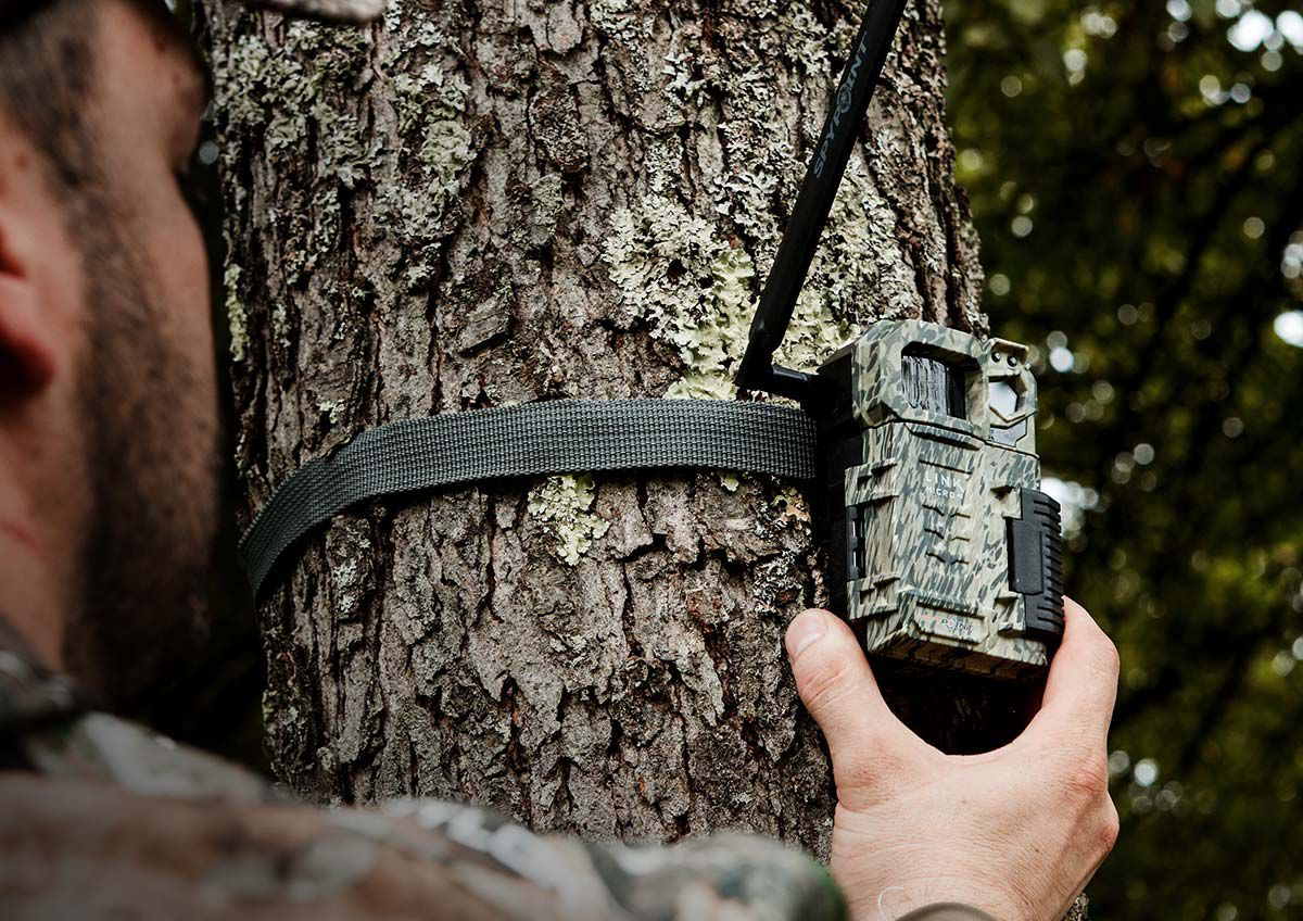 Closeup of a hunter's hand attaching a Spypoint Link-Micro game camera to a tree.