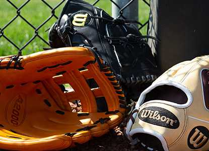 2019 Pro Series Gloves - A2000, Heart Of The Hide & More