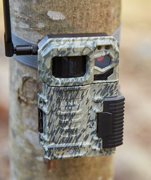 Spypoint link-micro 4g cell game camera, the smallest trail camera on the market, strapped to a tree