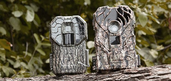 New Trail Cameras - Track The Big One